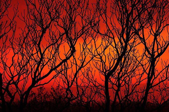 #naturephotography #nature #sunset #colors #autumn #canon #canoneos #canoneosphotography