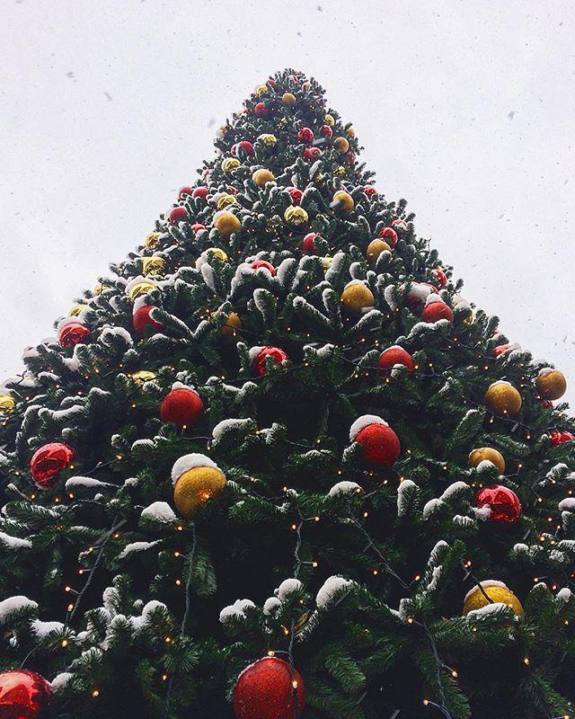 #christmas #christmas2018 #christmastree #budapest #welovehungary #winterwunderland #snow #snowing