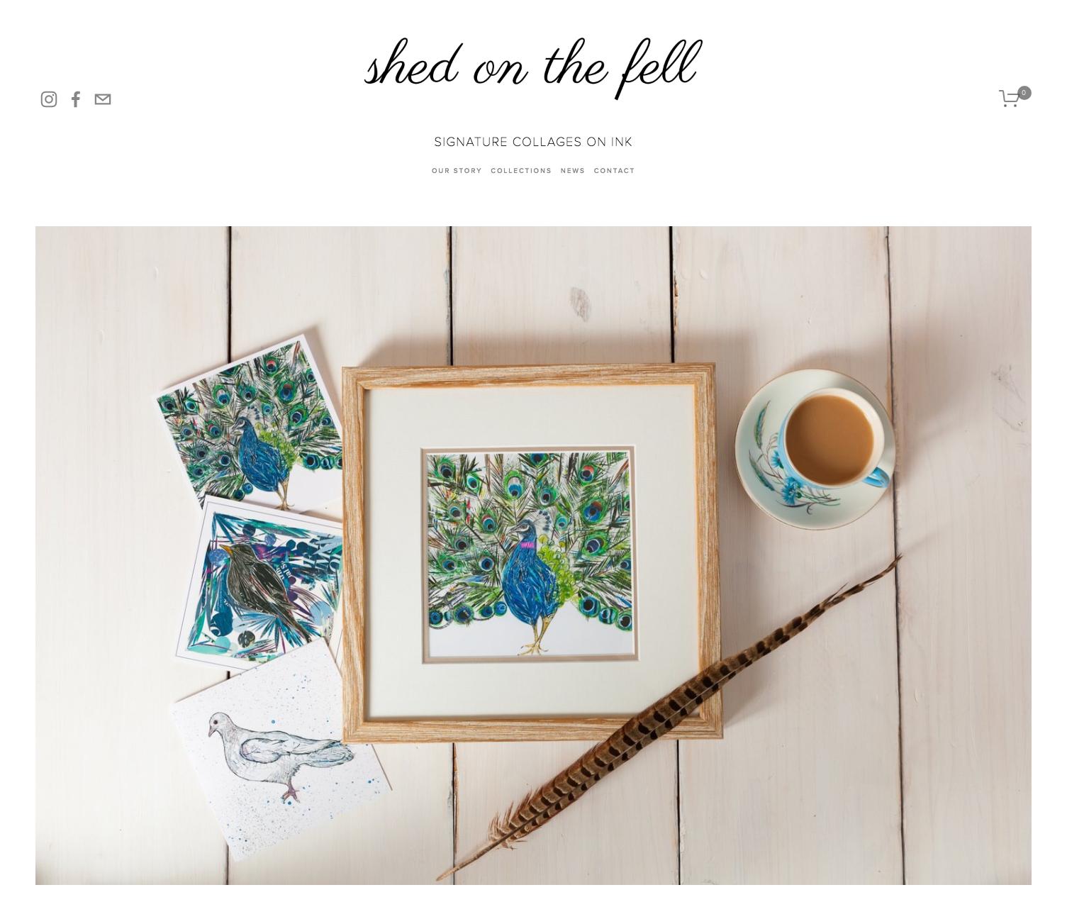 new_website_by_moozi_digital
