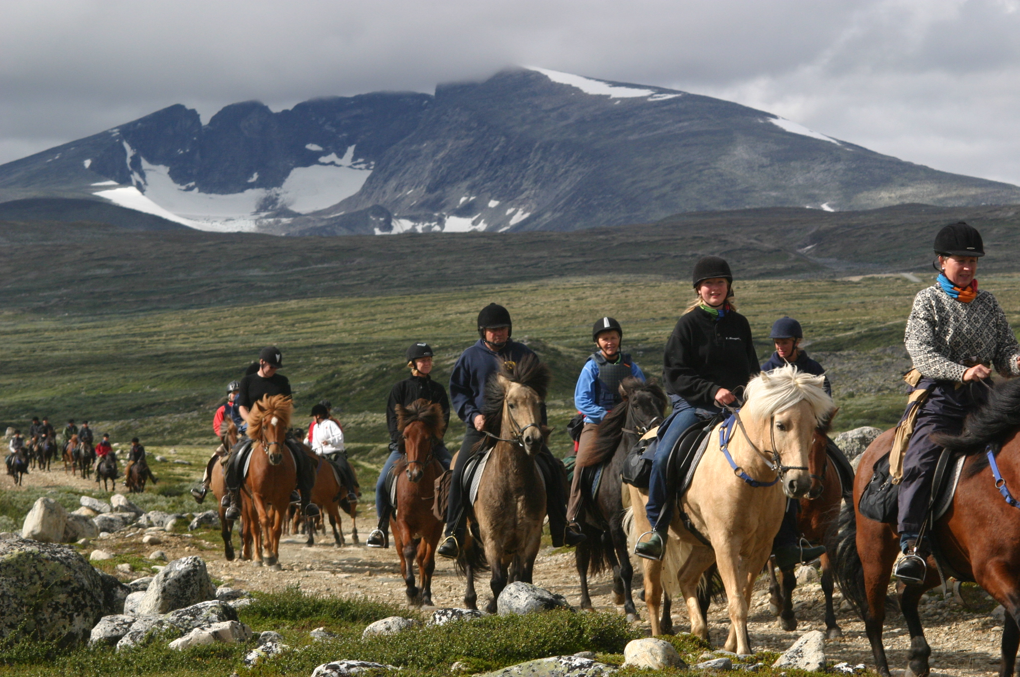 Fjellridning - På Dovrefjell finner du rideturer for både nybegynnere og erfarne ryttere.