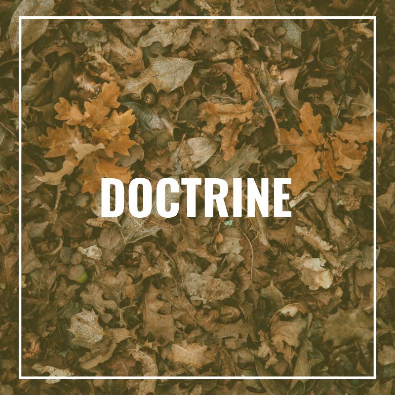 Doctrine | BTI Stellenbosch