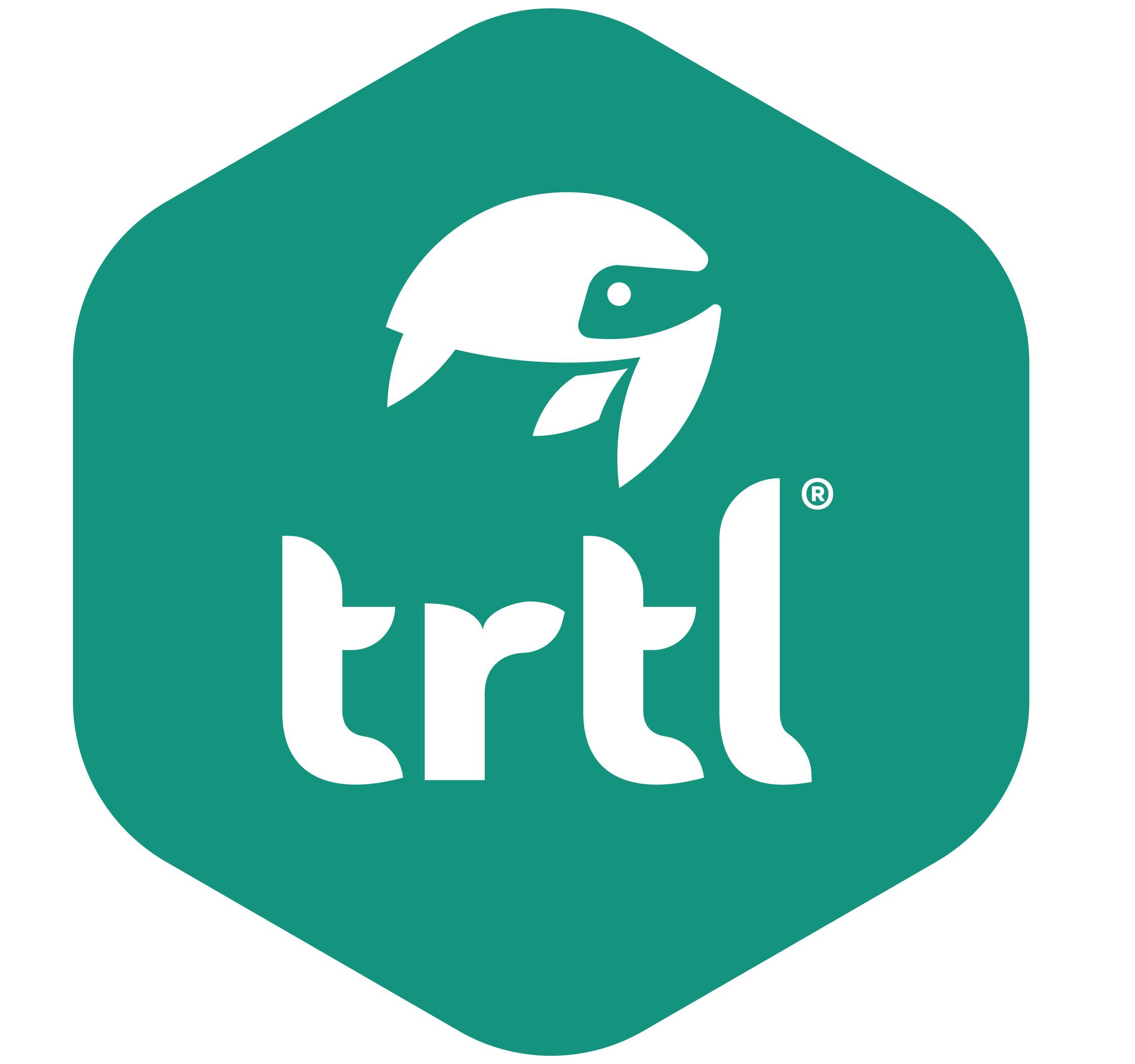trtl-pillow-png.png