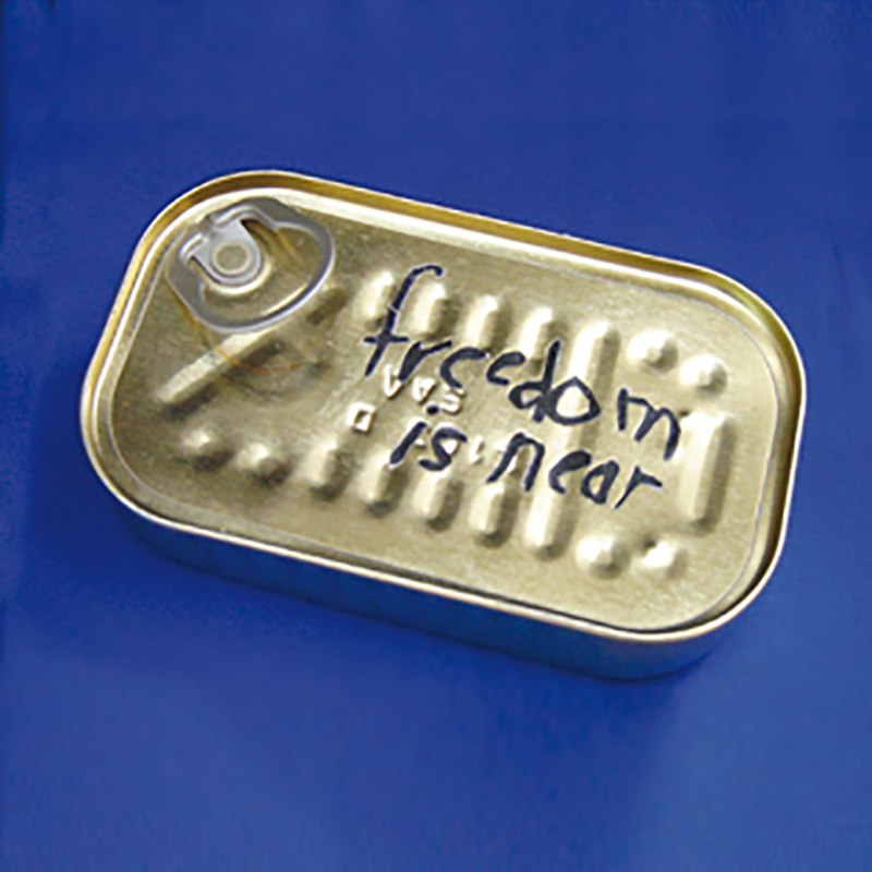 Where Has the Dream Gone?  Sardine can and paper (2006)