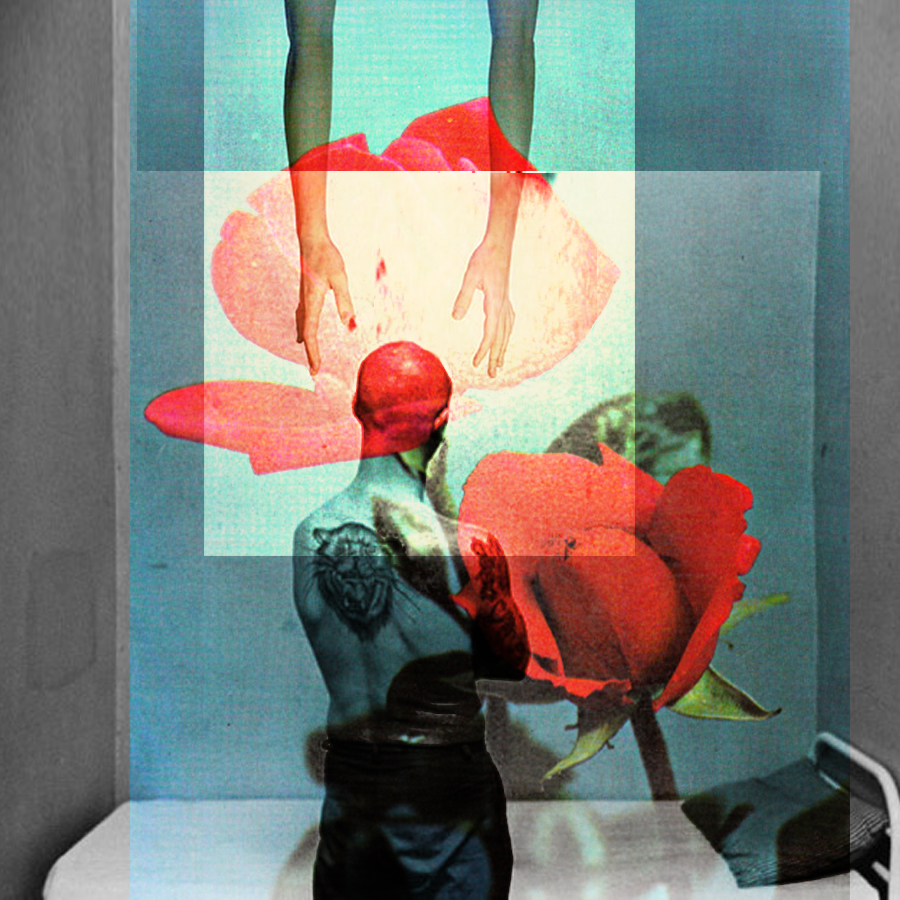 Brief  Found Images / Digital Collage  12in x 12in Archival Print (2017)