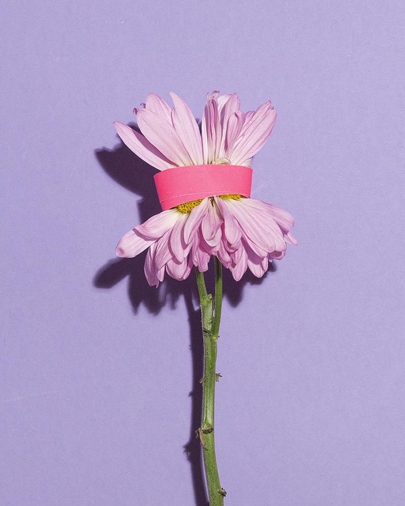 FLOWER_3B.jpg