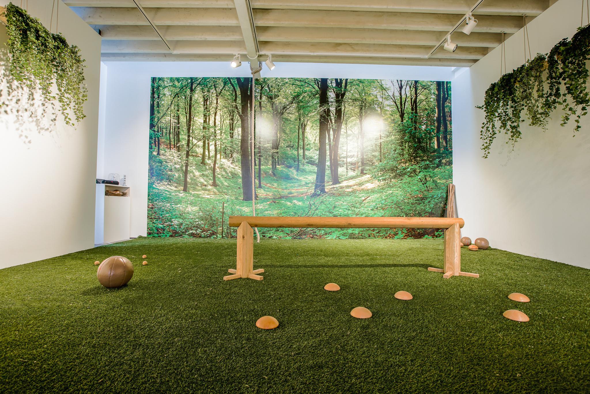 biofit nature gym design  biophilic gym eco gym interior designers