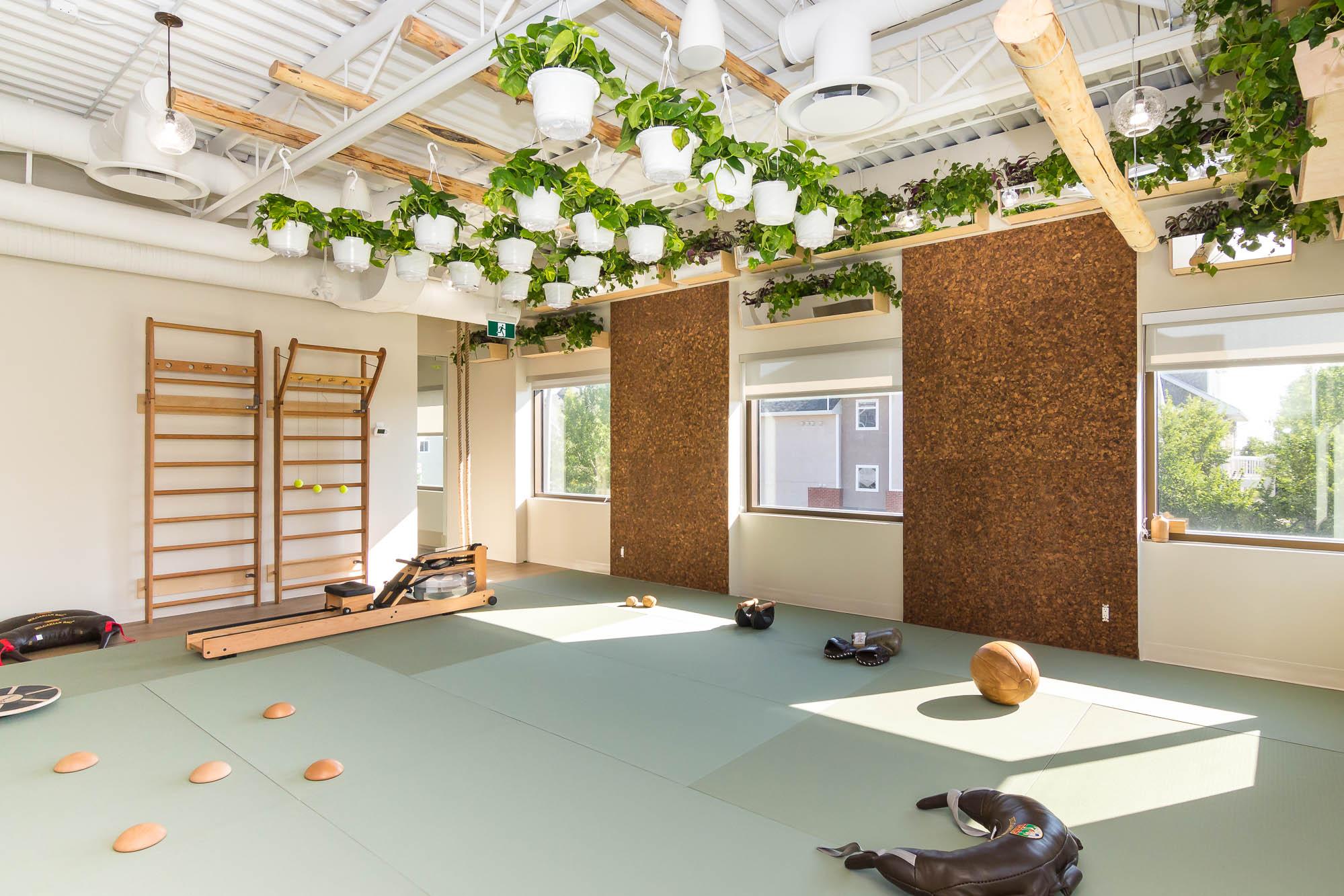 biofit biophilic gym design, calgary, canada