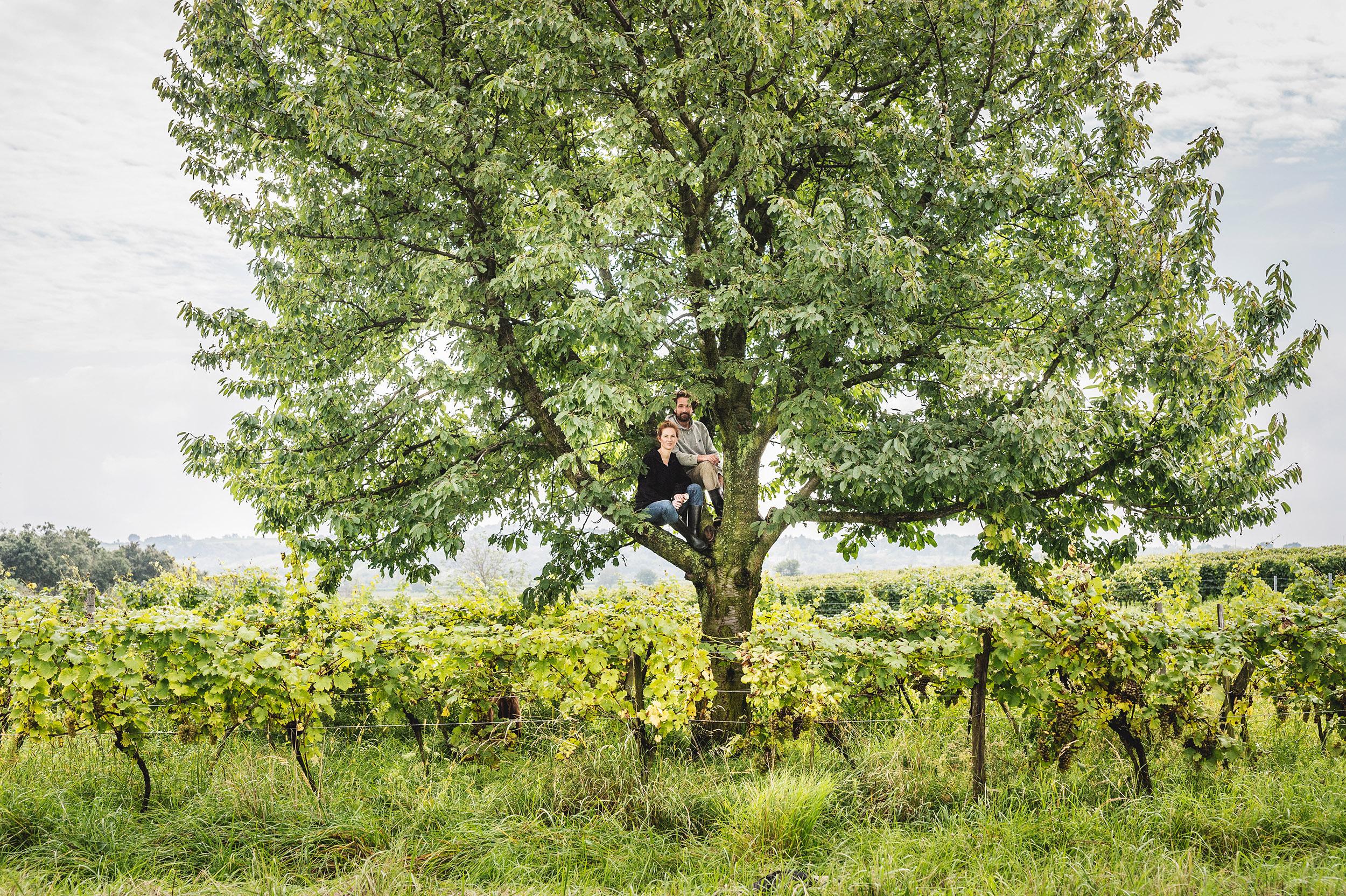 GUT OGGAU / Winemaker