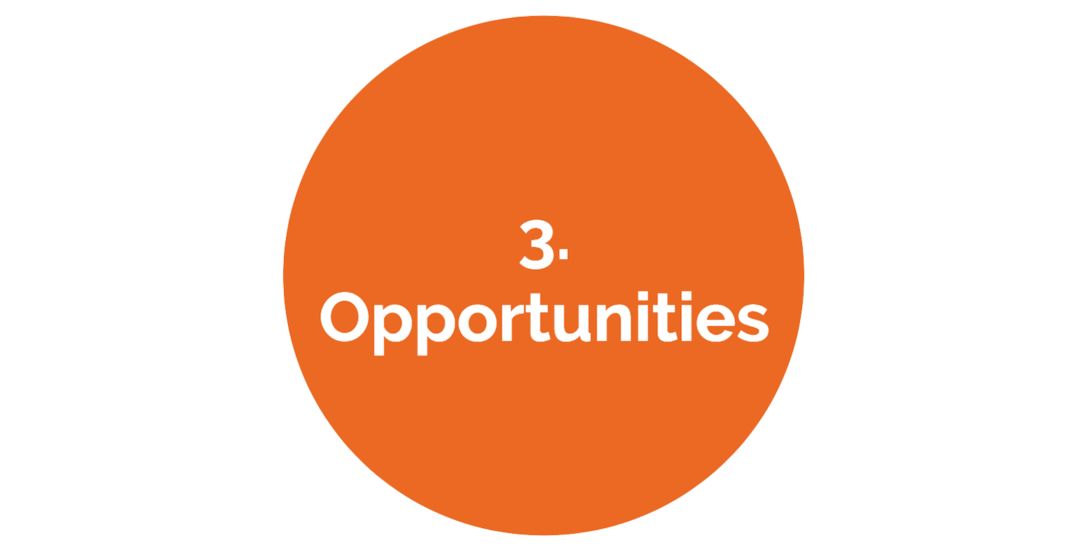 3 opportunities2.png