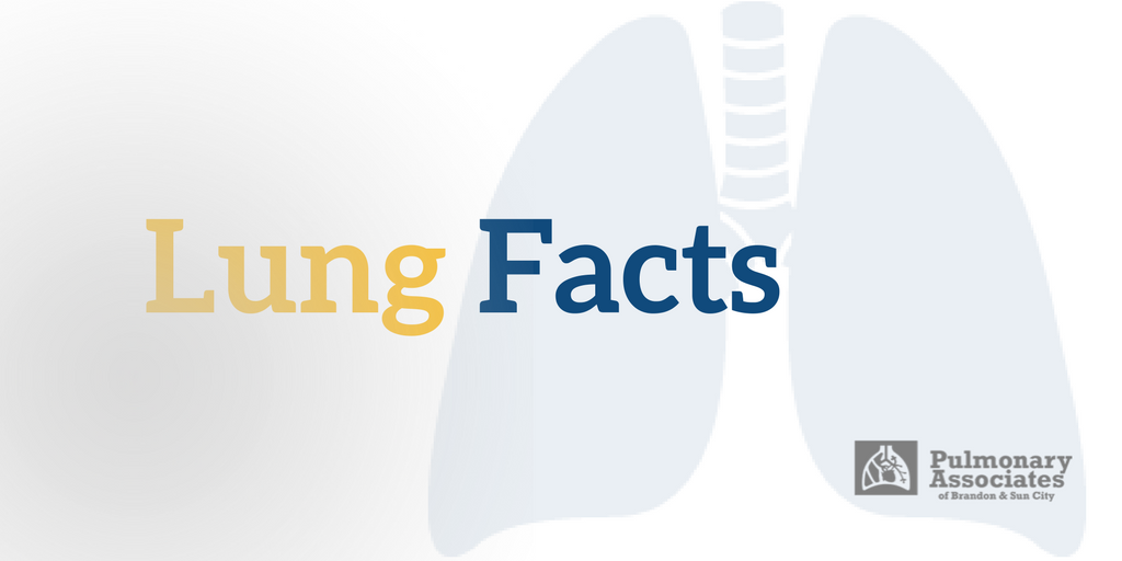 Lung facts, pulmonary health, respiratory system