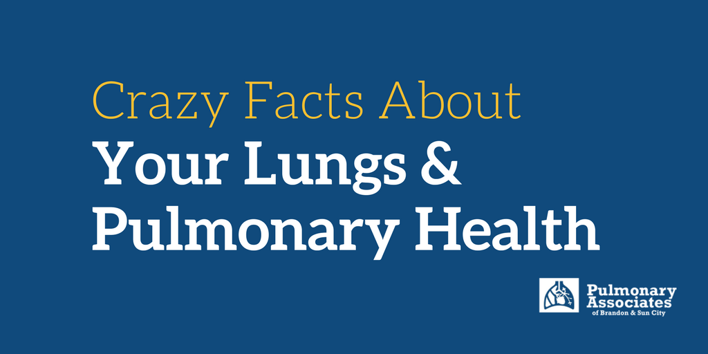 Crazy Facts About Your Lungs and Pulmonary Health, Lungs, Pulmonary Health