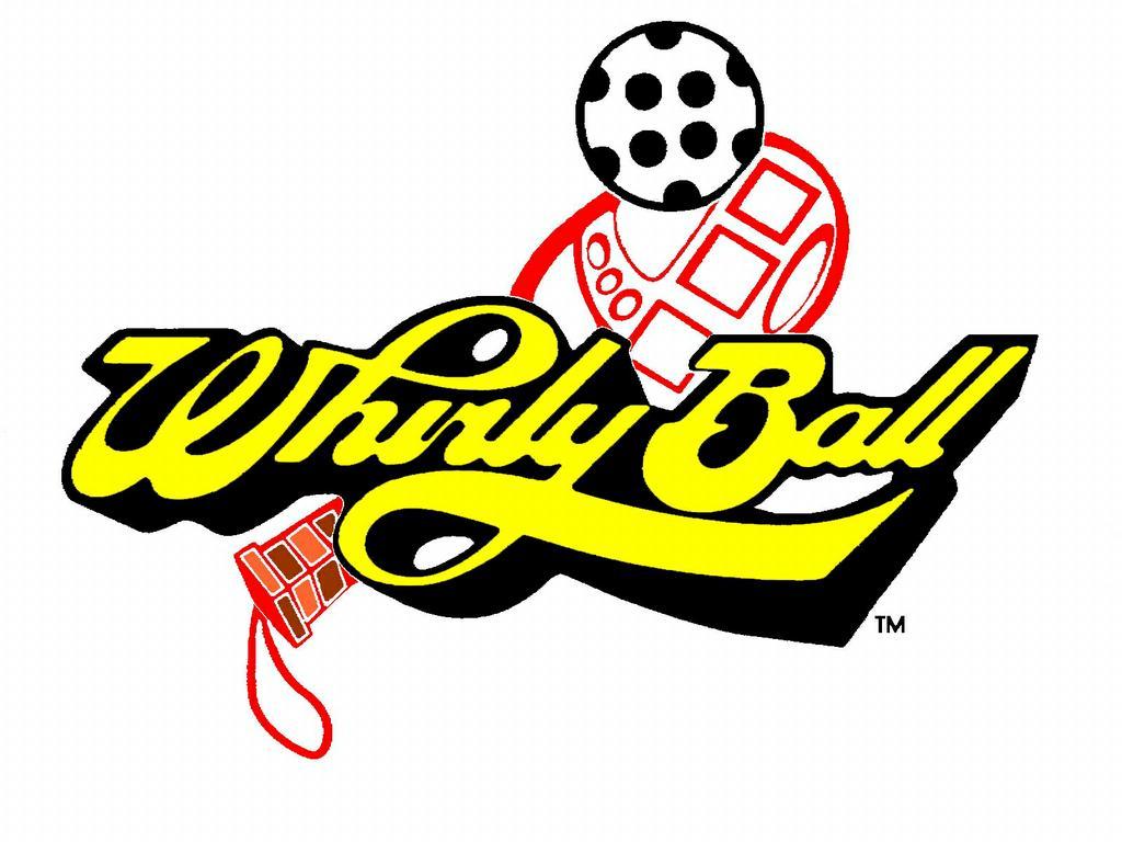 whirly ball.jpeg