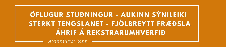 Öflugur stuðningur - Aukinn sýnileiki - Sterkt tengslanet-Fjölbreytt fræðsla - Áhrif á rekstrarumhverfið (3).png