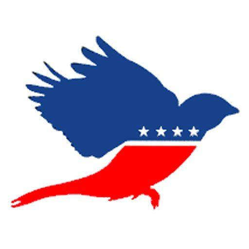 progressive wing.jpg