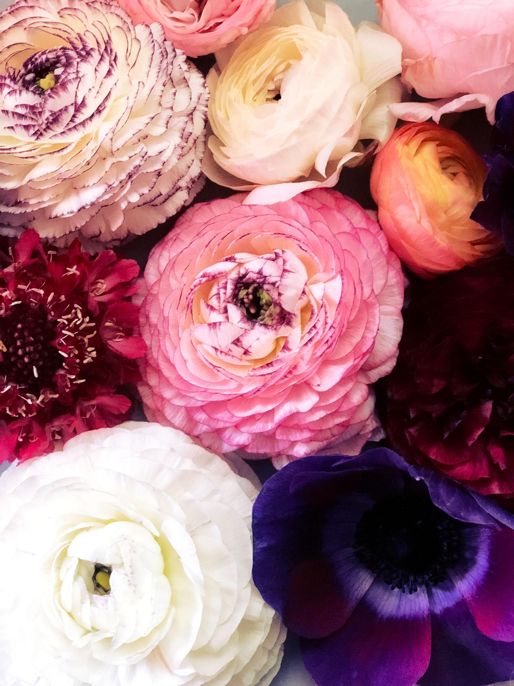 ahr florals san diego floral designer.jpg