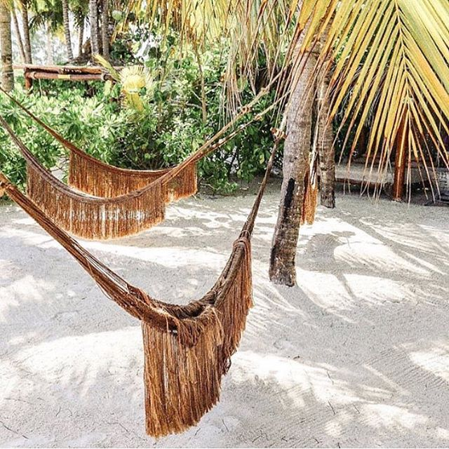 Where I want to be. . 📷 @shoptidelander . .  #tropical #tropicalvibes #plants #greenery #happy  #bahamian #coastal #mermadical #allthingsmermaid #allthingsradical #mermaid #mermaids #mermaidinspiration #hammock #hammockcamping #mermaidliveshere #surfer  #surfersparadise #surfersparadise #boho #bohostyle #hippie #hippiestyle #openair #airbnb #airbnbexperience #minimalism #WA #westernaustralia  #backyardgoals
