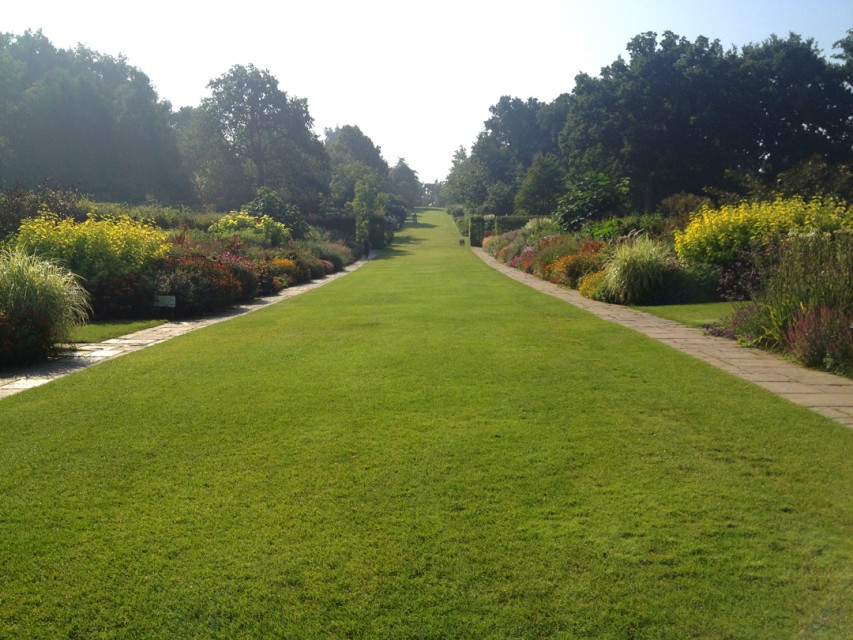 The late-blooming Long Borders were the most unexpected and impressive surprise at Wisley.