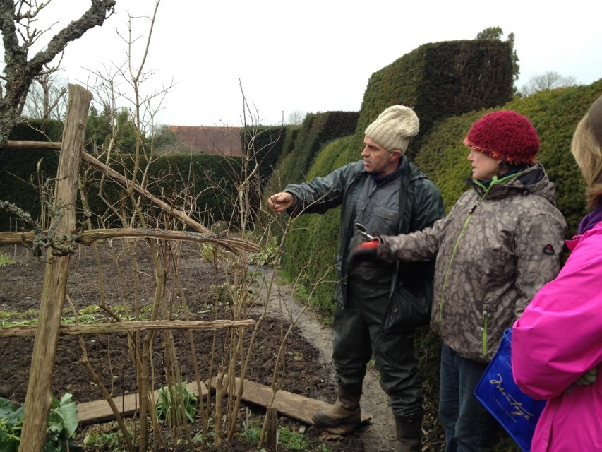 pruning demonstration