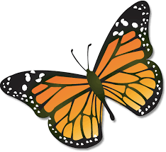 Butterfly Cooperative School - 30695 SW 162nd AveHomestead, Florida 33033786‑471‑7359 butterflycoophome@gmail.com