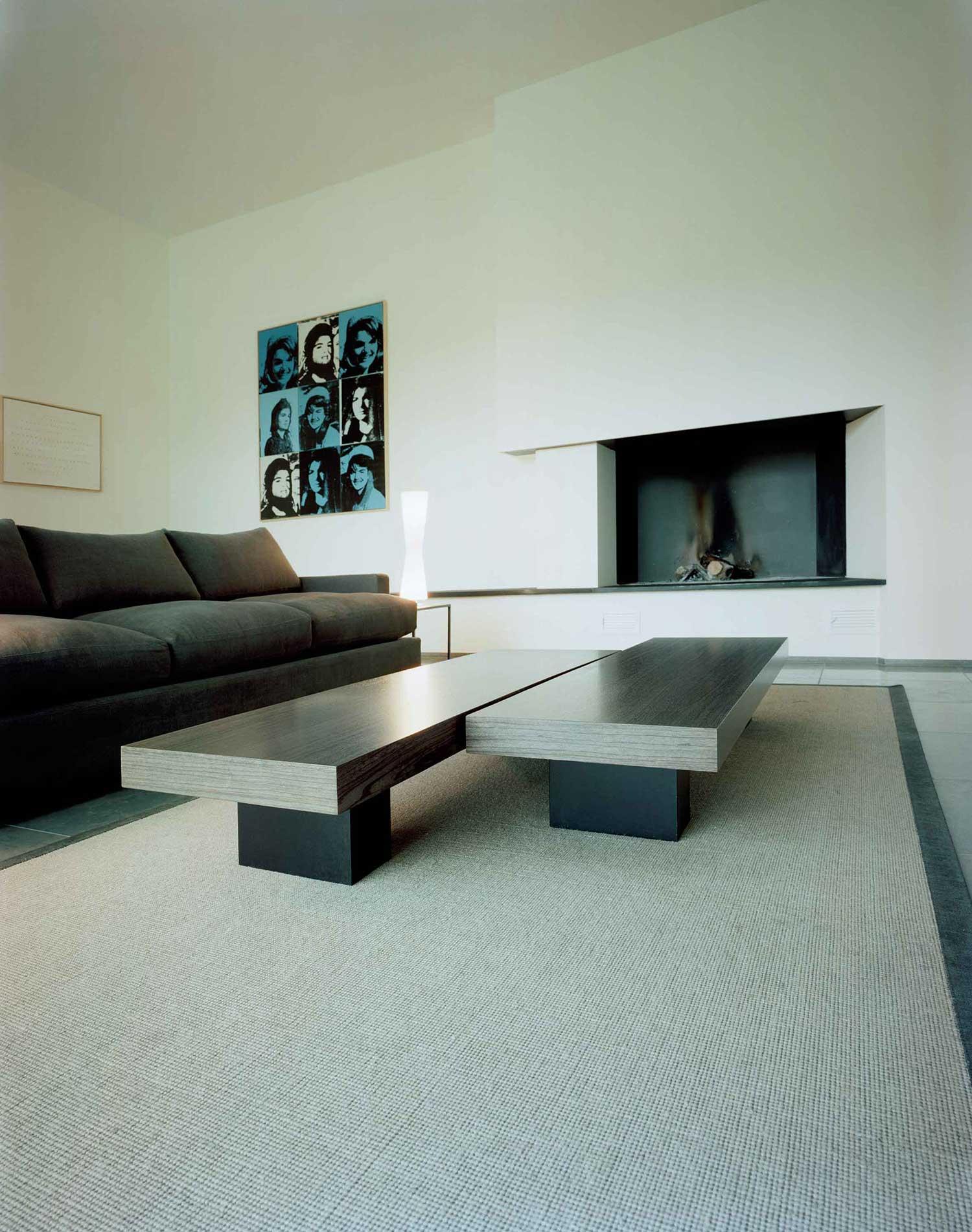 001-iria-degen-interiors-house-zurich6.jpg