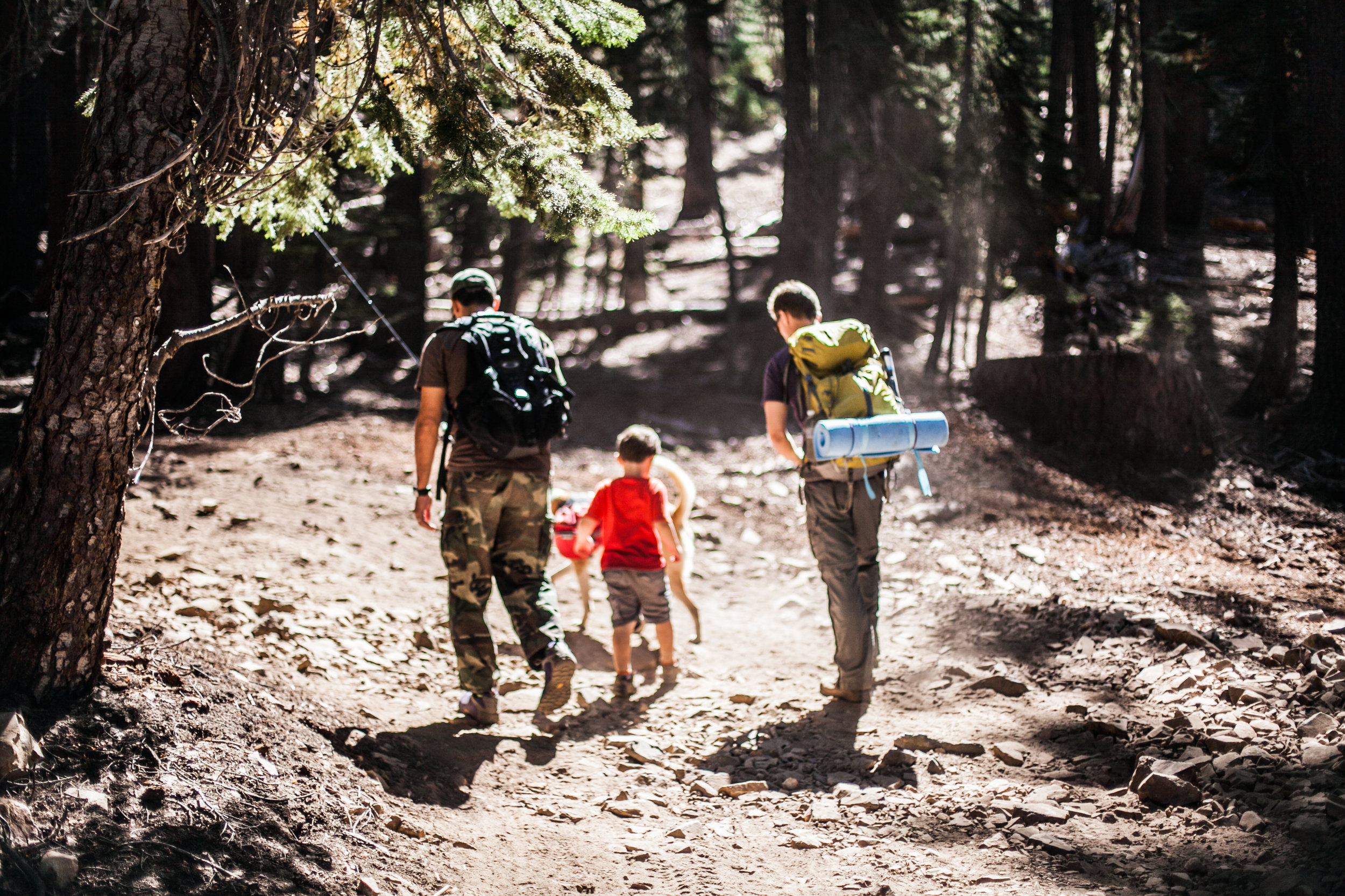 Sierra-Vista-Scenic-Byway-Madera-County-hiking-Iron-Lakes-Annie-Starkey-photography.jpg