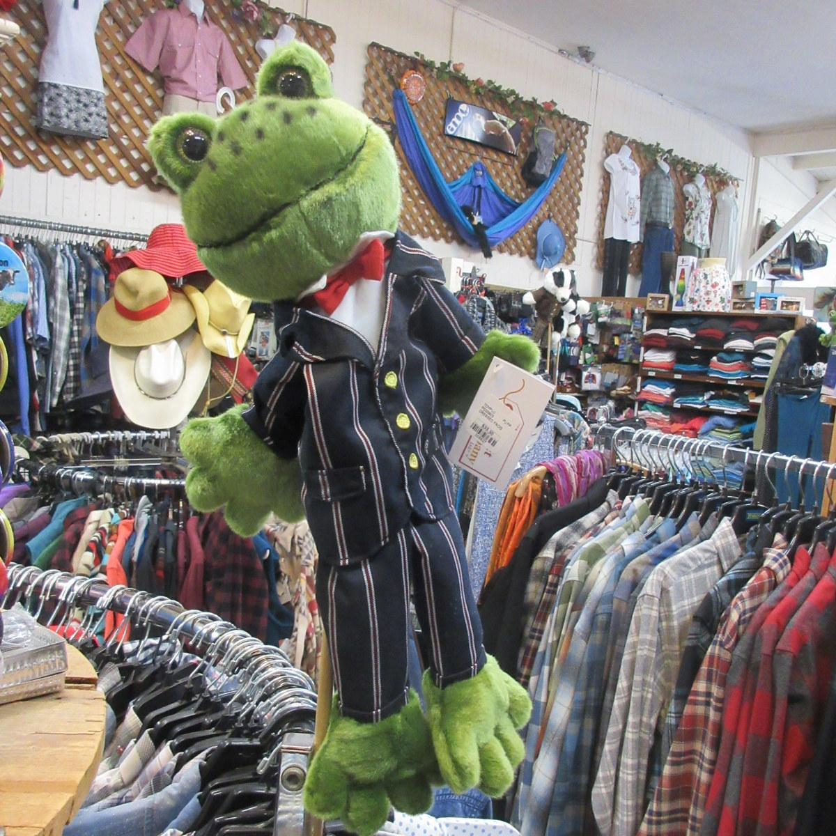 Dressed Frog Puppet from The Puppet Company