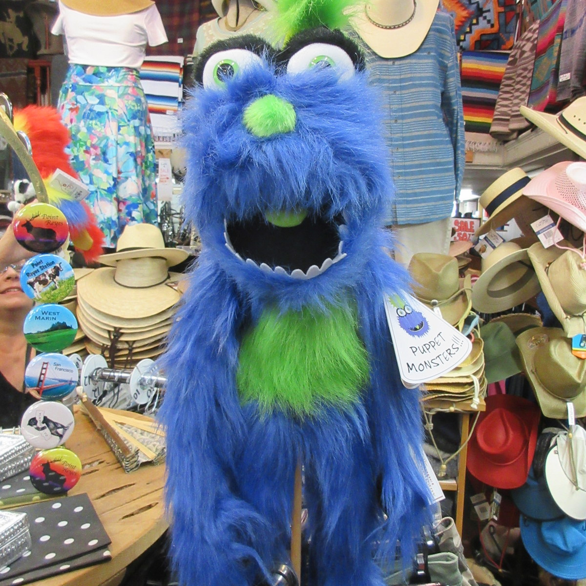 Blue Monster Puppet from the Puppet Company