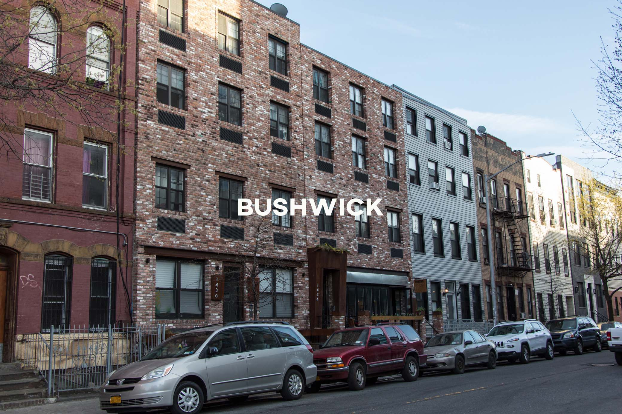 Bushwick - A young, vibrant, and diverse, up-and-coming neighborhood