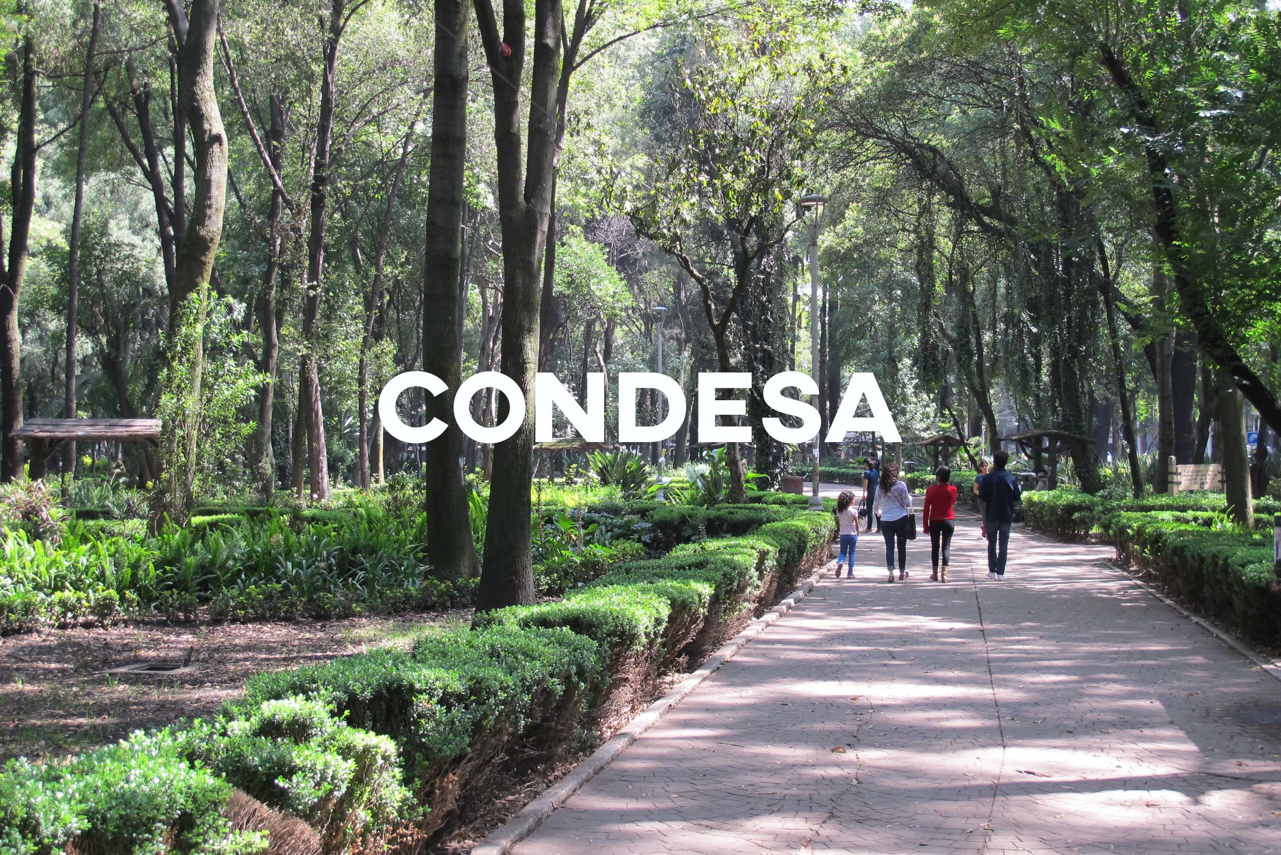 Condesa - Fashionable & bursting with personality.