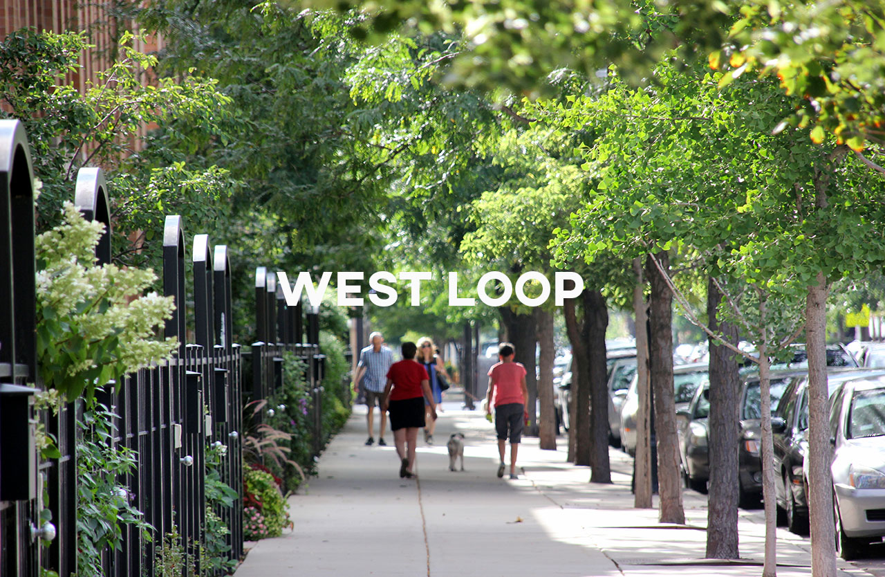 West Loop - Full of new growth while retaining some of its old grit and character