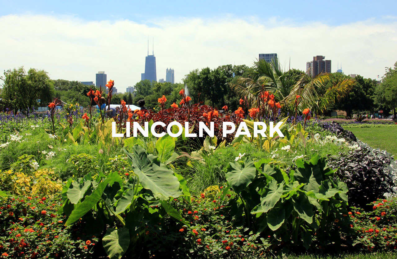Lincoln Park - Diverse residents and activities with all the city's best amenities