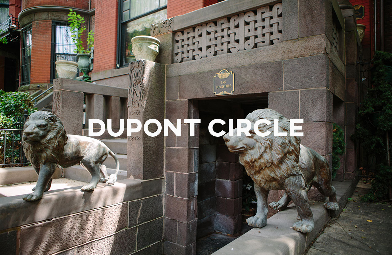 Dupont Circle - A city vibe with lots of restaurants and bars but great diversity as well