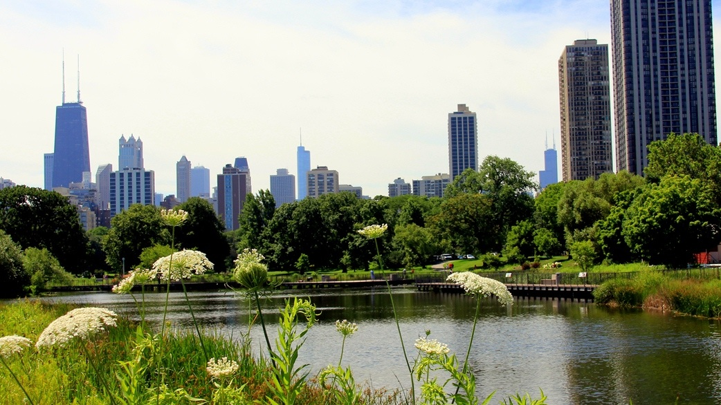 An oasis in the city, Lincoln Park is the perfect place to take a break from Chicago's bustling atmosphere.