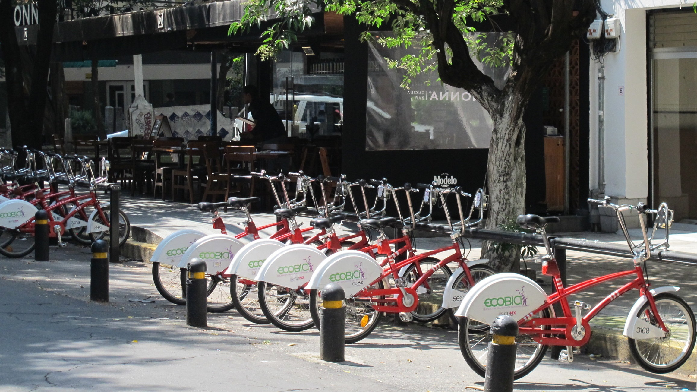 EcoBici bikes can be found all over Mexico City's most popular neighborhoods.