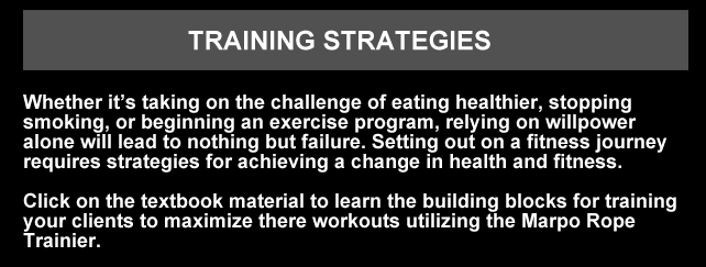 TRAININGSECTION1.png
