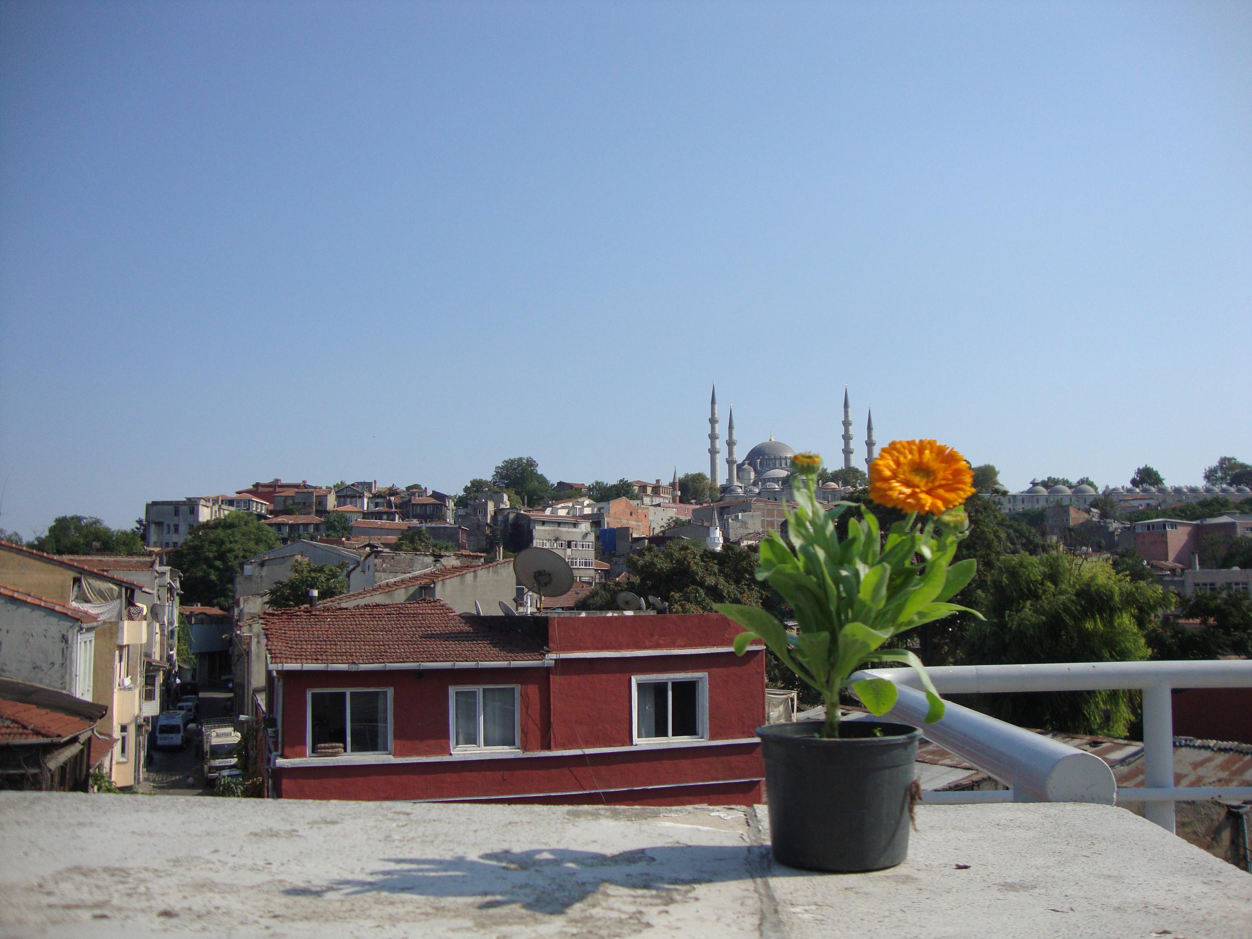 Istanbul Desk-9.jpg