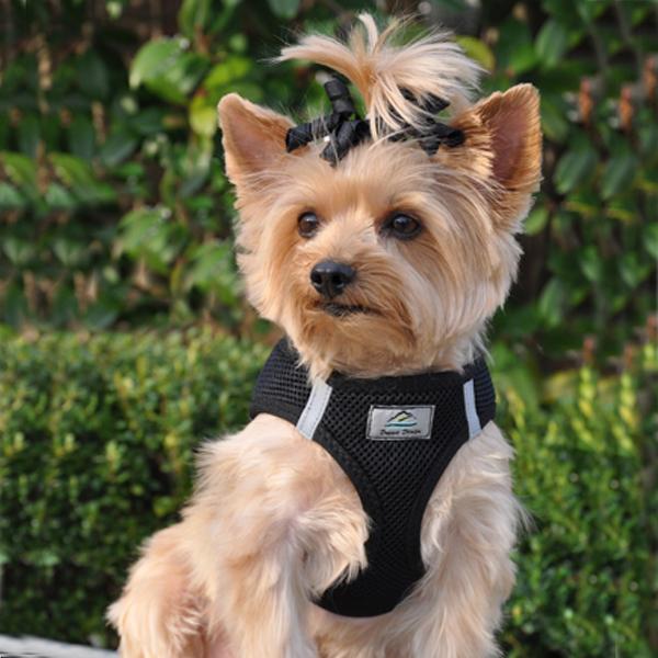 american-river-ultra-chokefree-mesh-dog-harness-black-2.jpg
