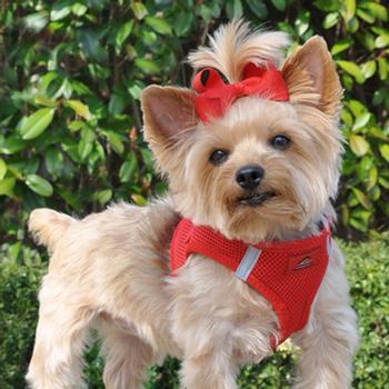 american-river-ultra-chokefree-mesh-dog-harness-red-2.jpg