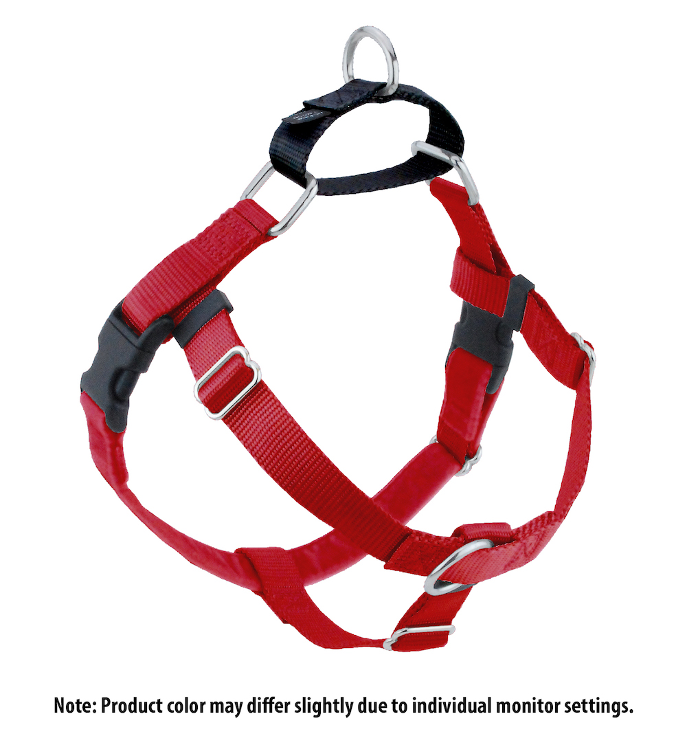 Red with Black Freedom no pull harness.jpg