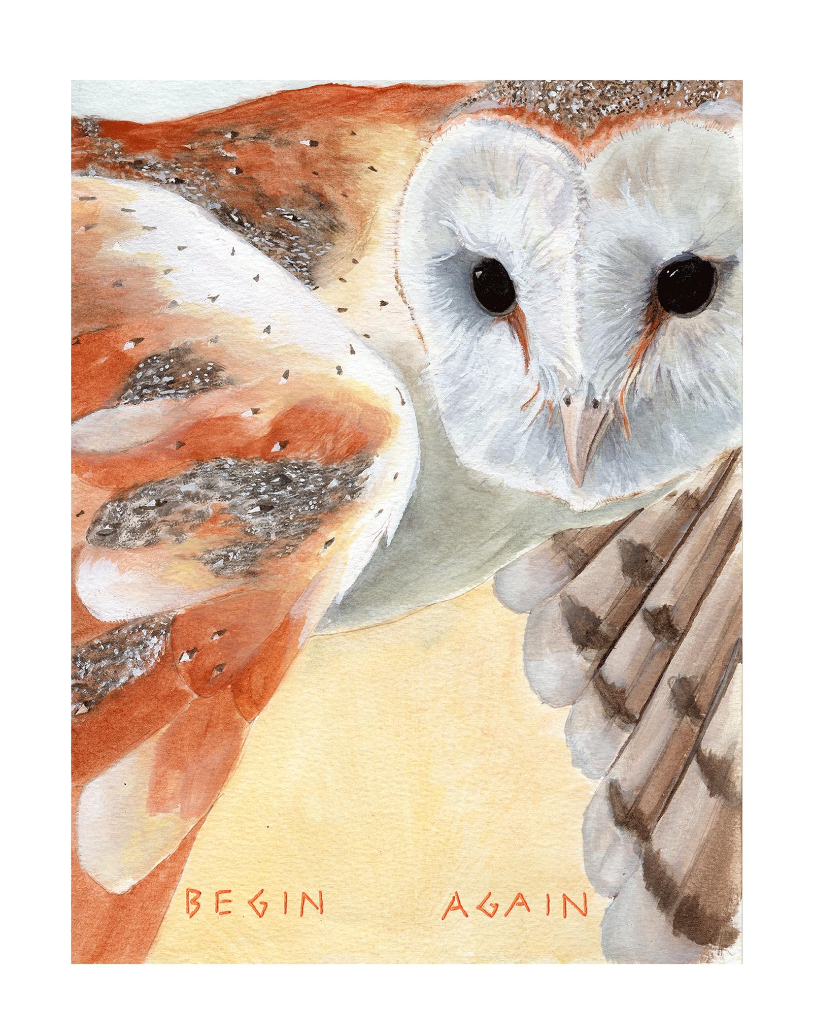 Begin-Again_FLOW.png