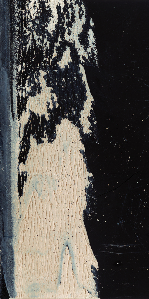 Cosmos Tide Neaps #19