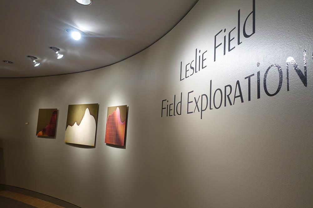 LField-Installation-23.jpg