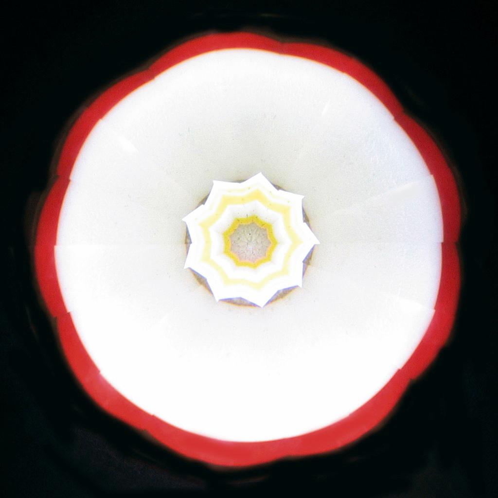 FieldL-SmellOfGeranium.jpg
