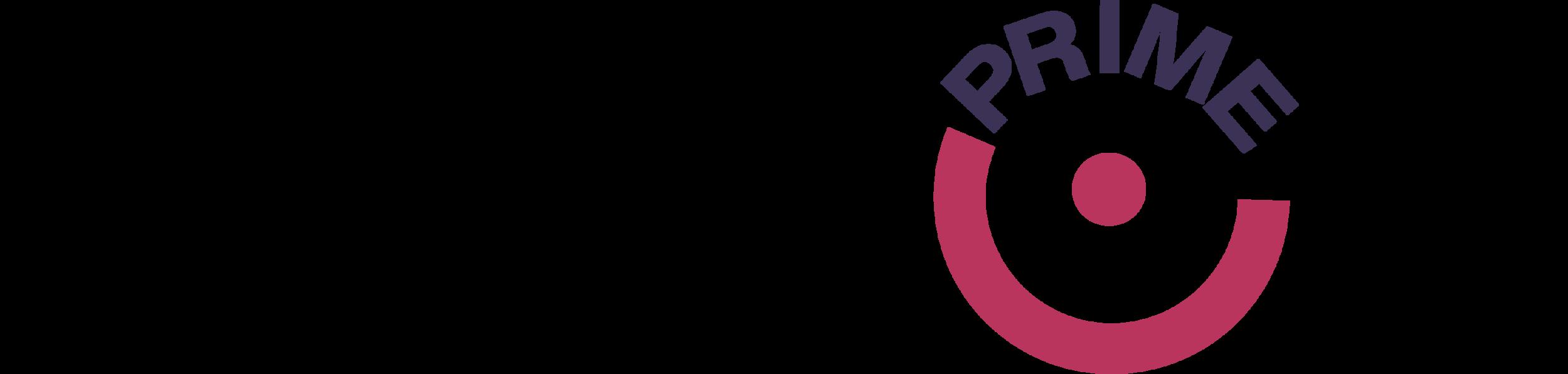 discop prime logo.png