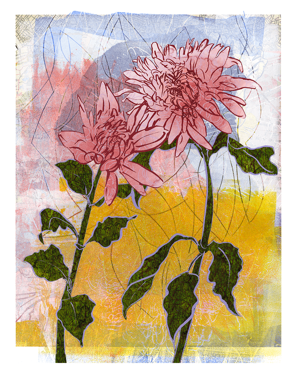 Two Dahlias 16 x 21 inches