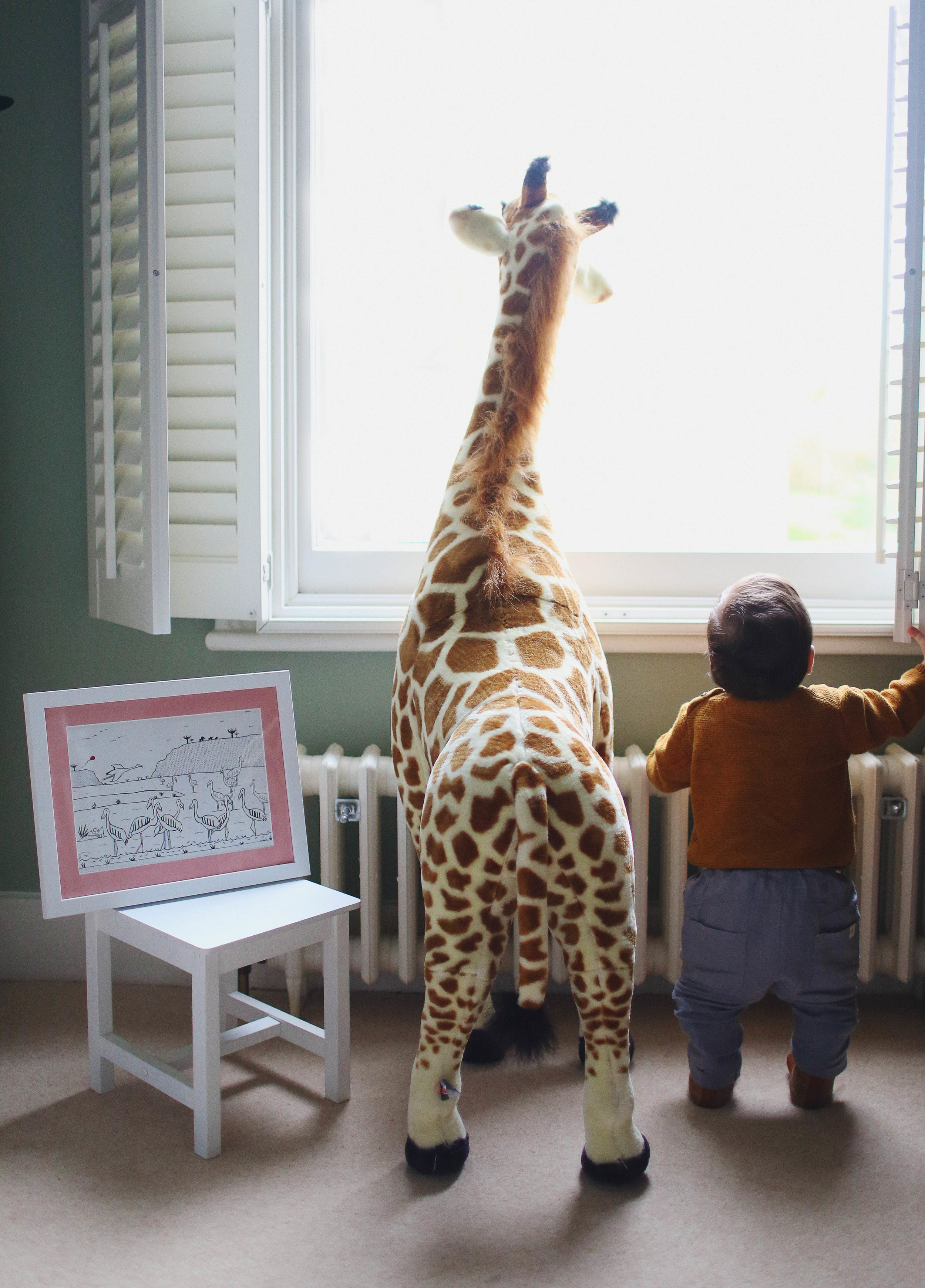 Alfie Giraffe.jpg