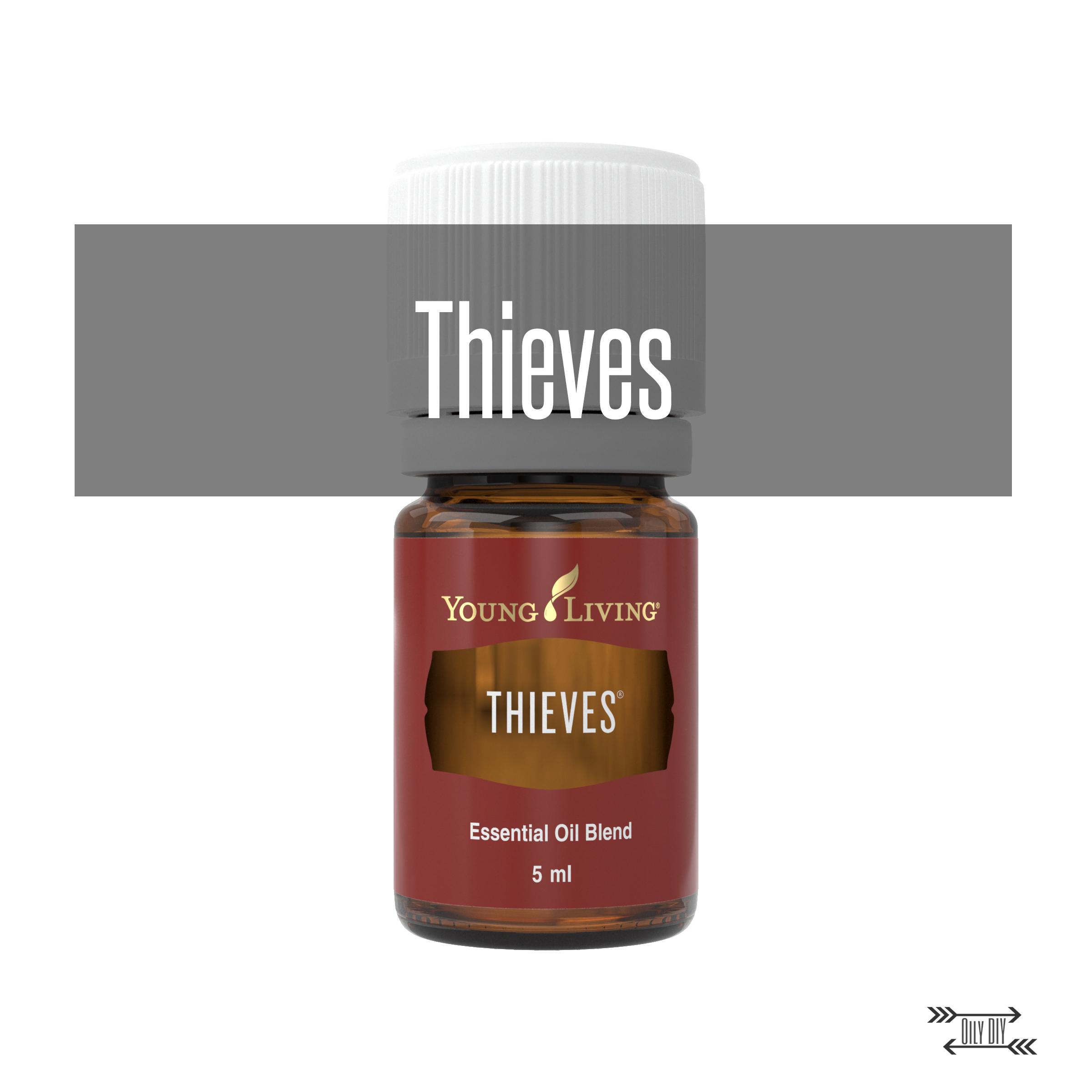 Thieves1Title.jpg
