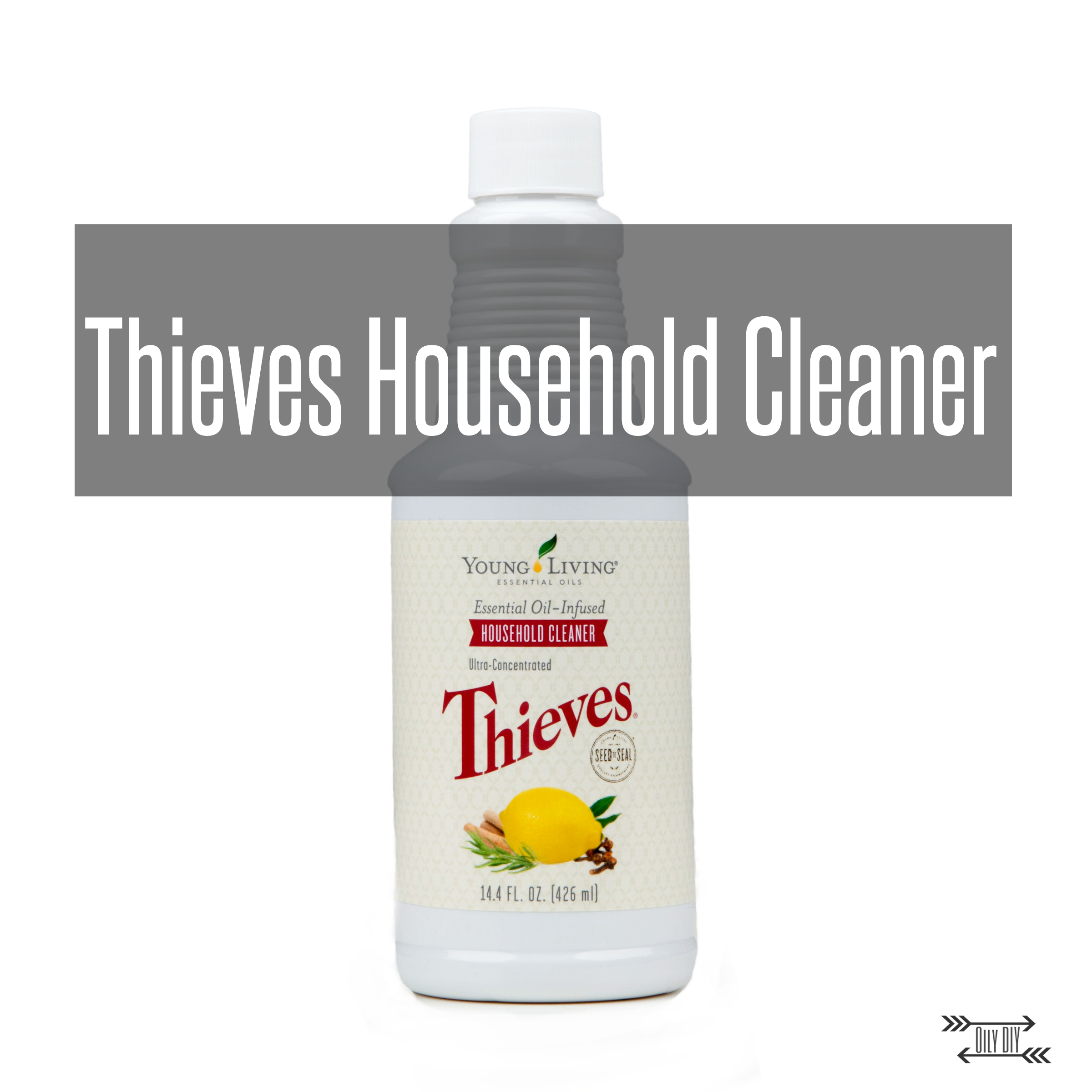 ThievesCleanerTitle.jpg