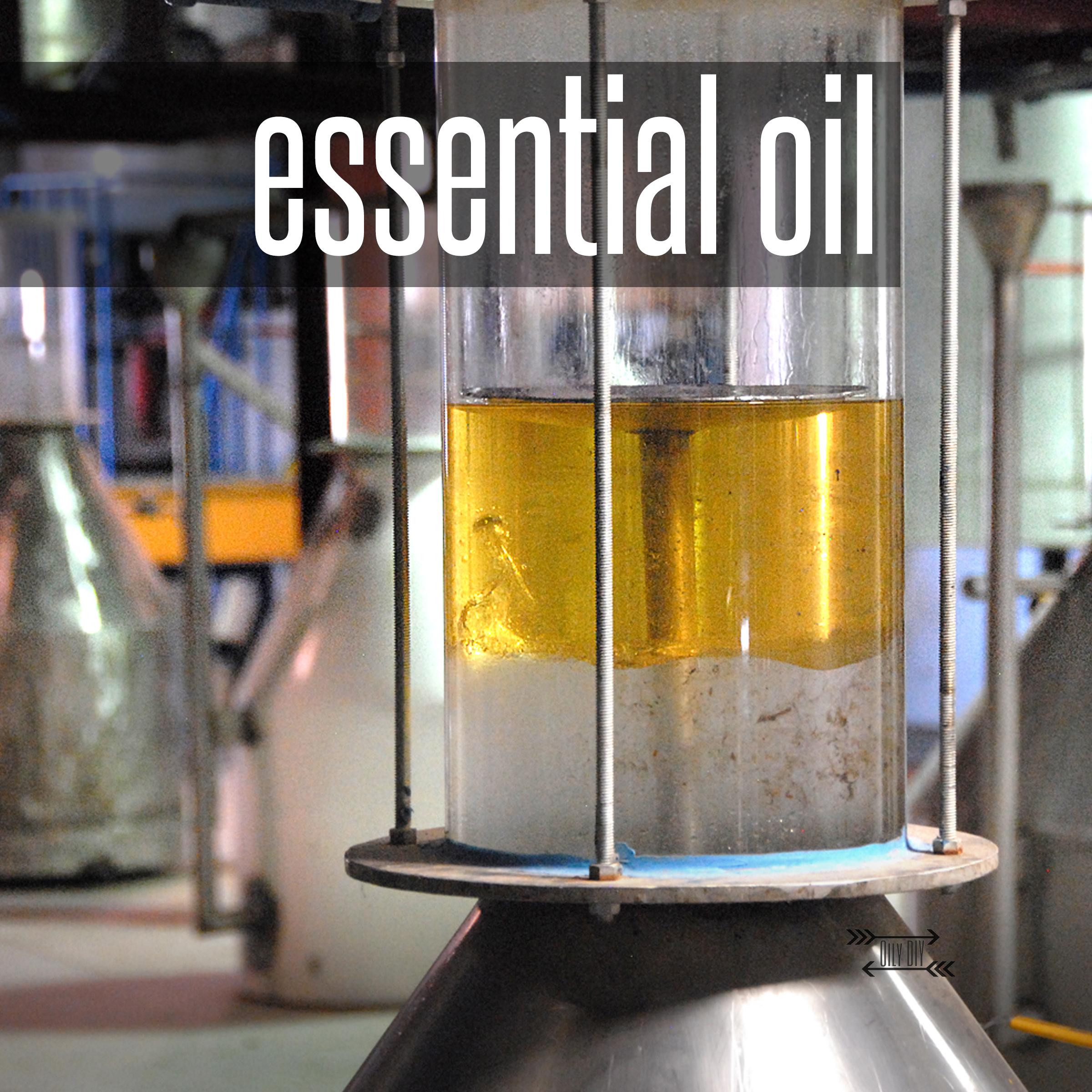 essentialoil_edited-1.jpg