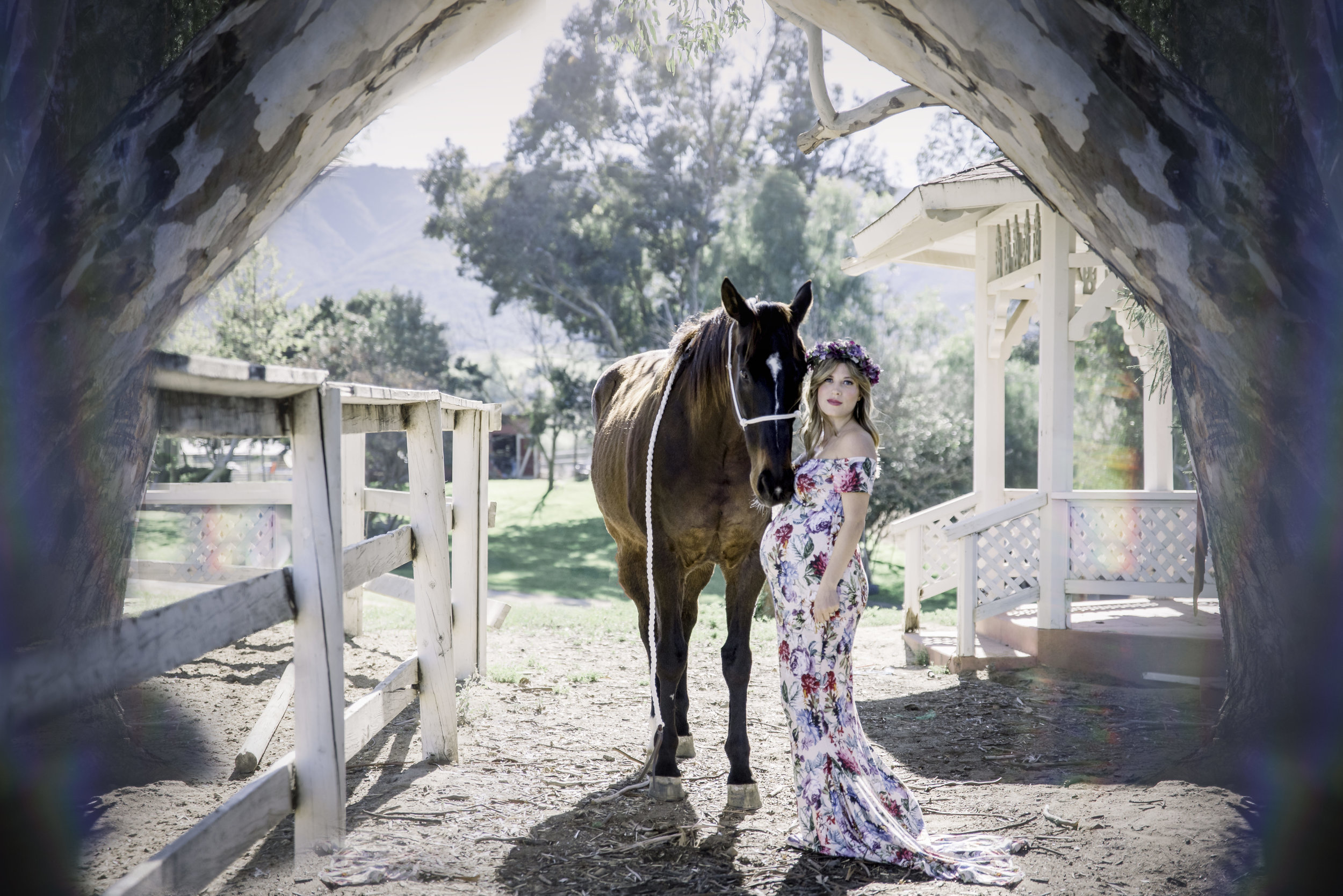 ranch Maternity sessions